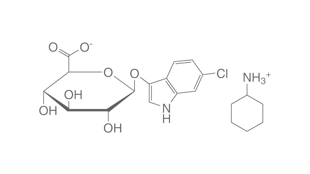 6-Chlor-3-indoxyl-β-D-Glucuronsäure Cyclohexylammoniumsalz, 10 mg