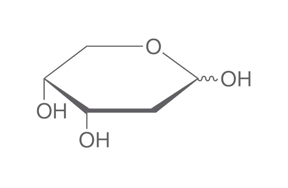 diagram of ribose deoxy 2 deoxy d ribose  5 g monosaccharides carbohydrates natural  2 deoxy d ribose  5 g monosaccharides