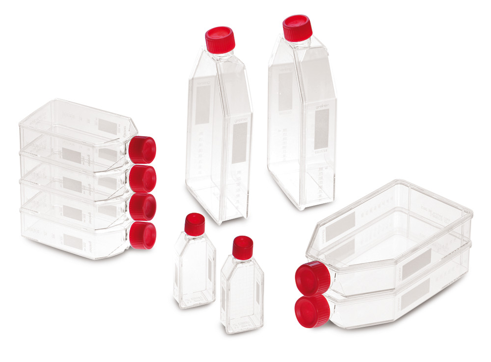 Cell culture bottles, 175 cm², 650 ml, 20-85 ml