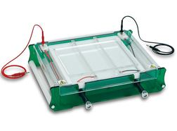 Flat Bed Electrophoresis Unit MULTI