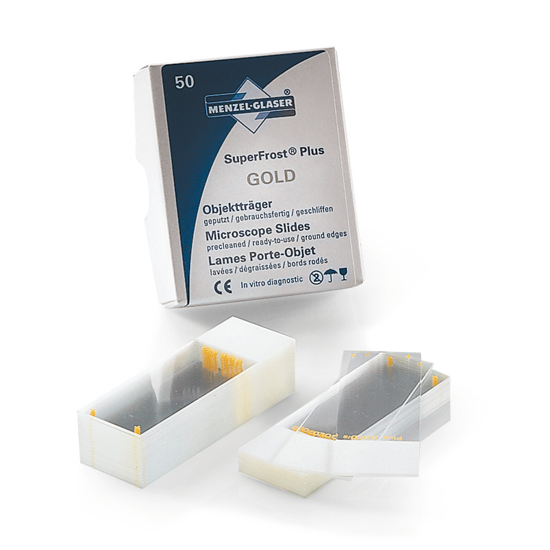 Adhesive slides Superfrost<sup>&reg;</sup> Plus Gold