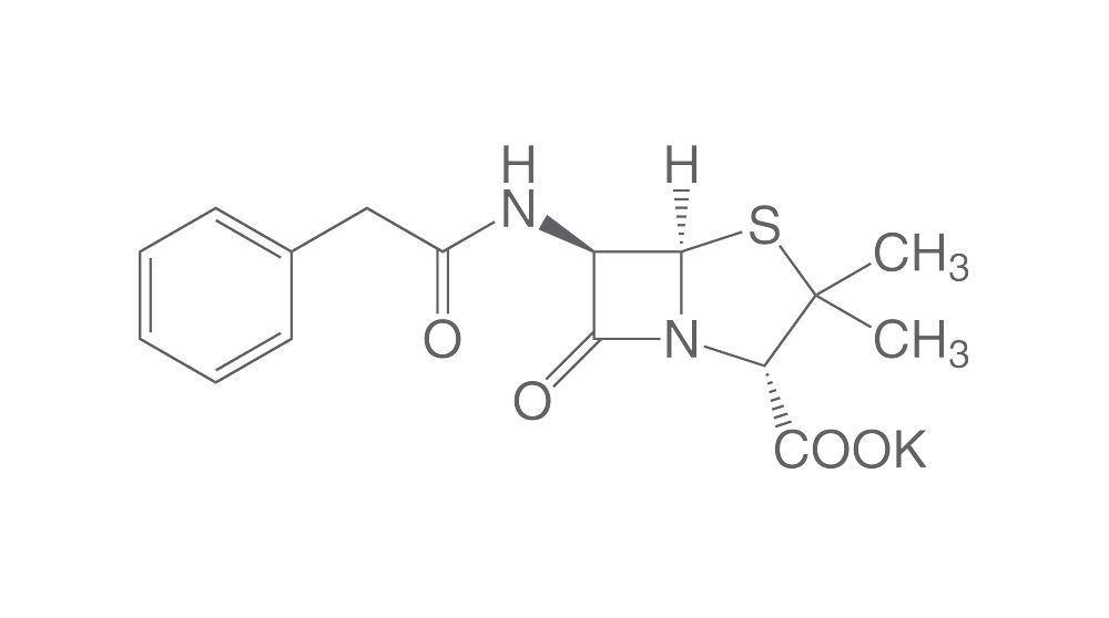 Penicillin G potassium salt, 25 g   dNTP Mixes   Reagents for cell culture    Cell culture   Applications   Carl Roth - International