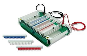 Electrophoresis Unit MIDI PLUS