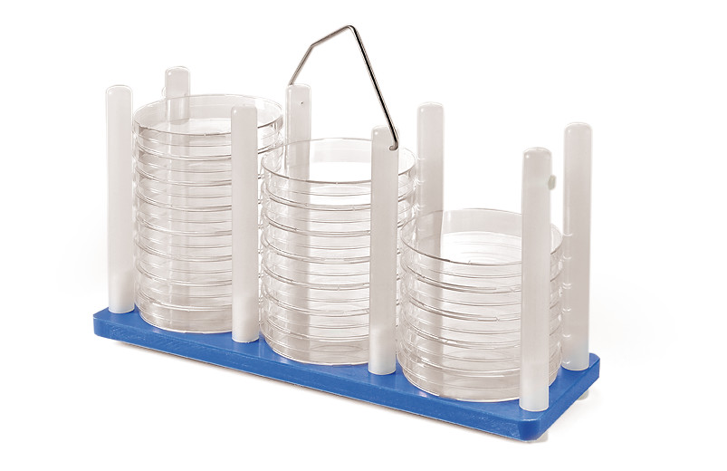 Petri dish stands ROTILABO<sup>&reg;</sup>, Red