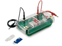 Electrophoresis Unit MINI