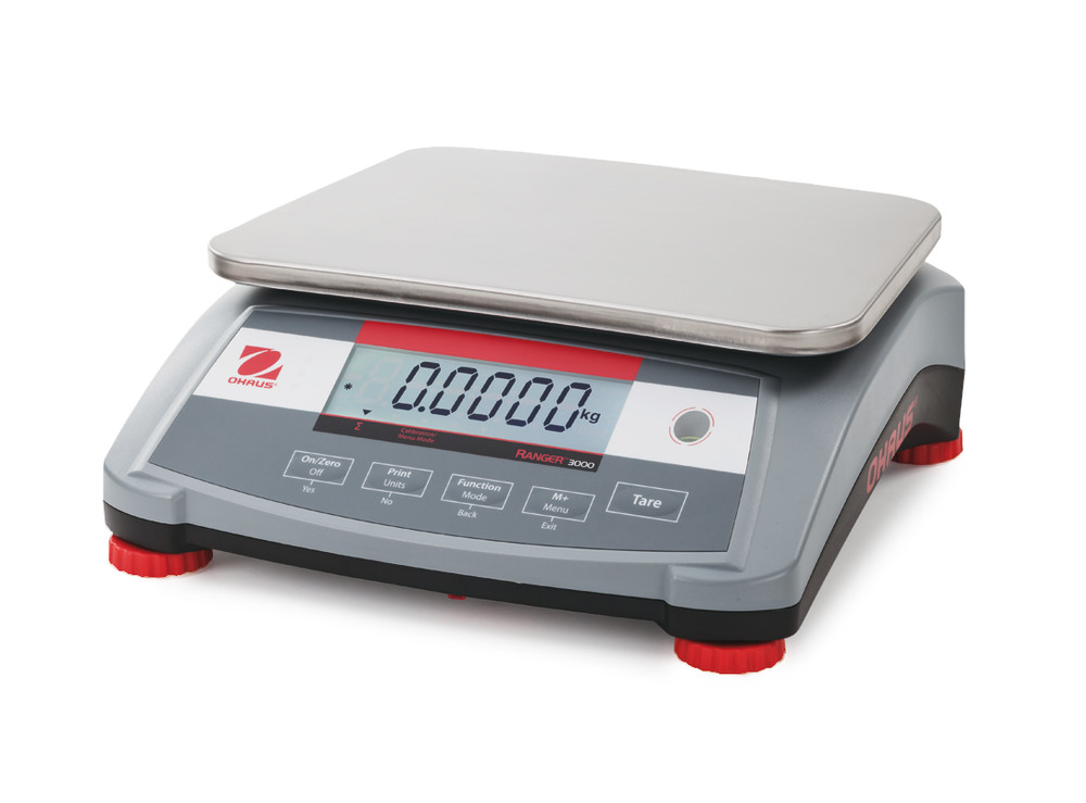 Platform balances Ranger<sup>&reg;</sup> 3000 series  Models calibrated ex works, 6000 g